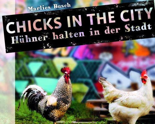 Buchcover zu 'Chicks in the City' von Marlies Busch