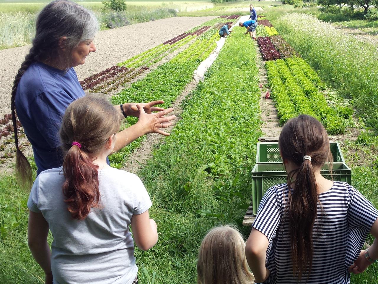 Besuch auf dem Bio-Bauernhof - Ökolöwe